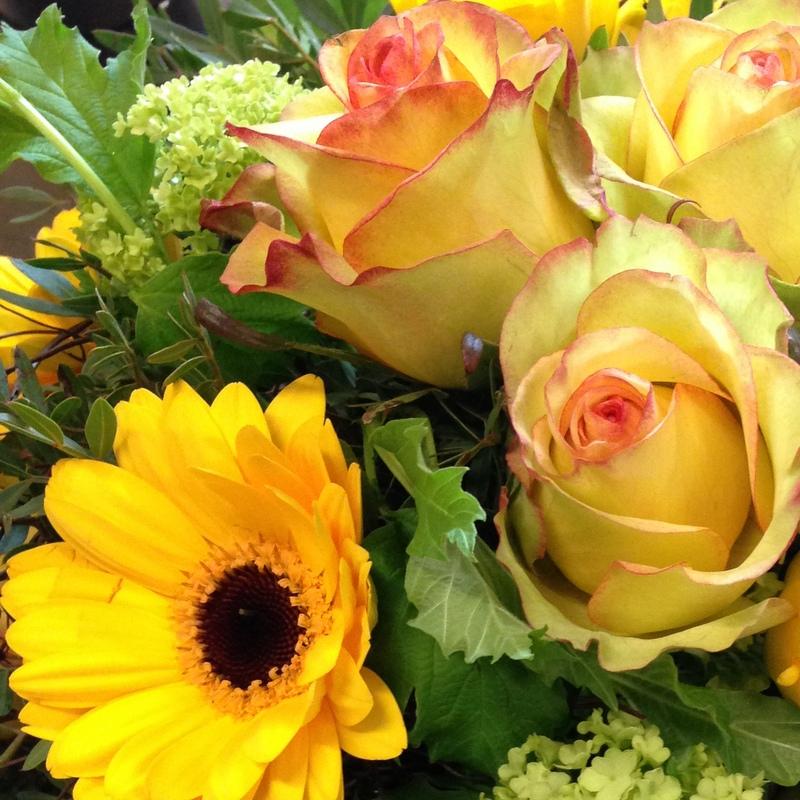 Schnittblumen aus dem eigenen garten pflanzen narzisse frische sträuße